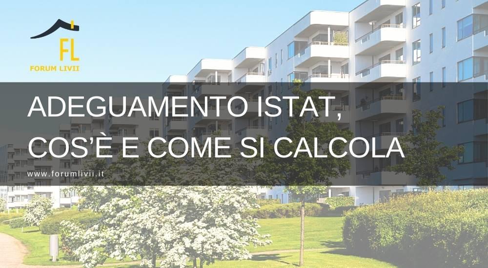 Adeguamento Istat, cos'è e come si calcola
