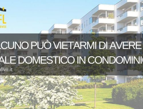 Divieto di un animale domestico in condominio?